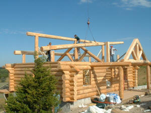 Building the Cabin