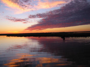 Sportsman's Lake Salt Marsh